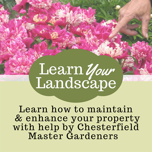 Learn Your Landscape